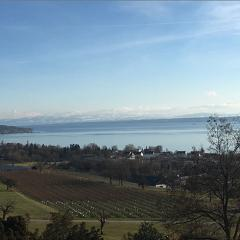 12-bodensee-470-470