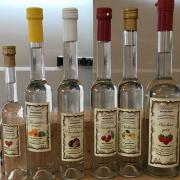 12-german-schnaps-from-fruit-470-470