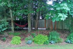 22-education-hill-redmond-home-backyard-summer