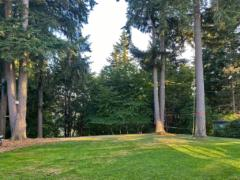 24-Bothell-Westhill-home-south-east-view