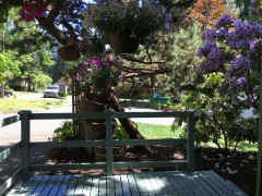 02-kingsgate-kirkland-home-for-sale-front-deck
