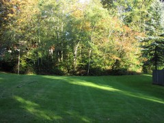 25.-kingsgate-kirkland-home-for-sale-lendemain-park
