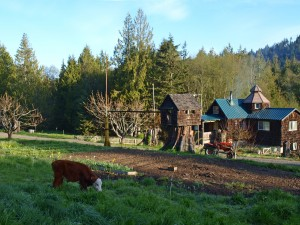 03-port-angeles-ranch-overview-4033