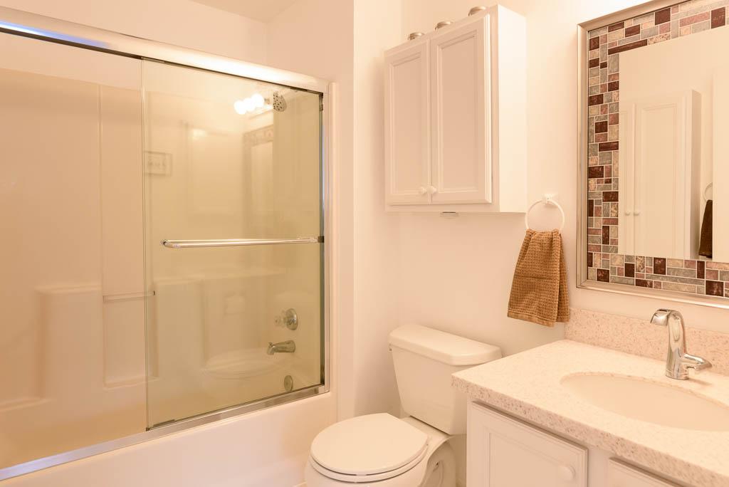 Seattle Maple Leaf Condo Bathroom