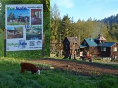 Seattle Area homes - Olympic Peninsula
