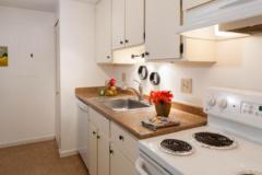 13-kirkland-home-for-sale-kitchen (1)